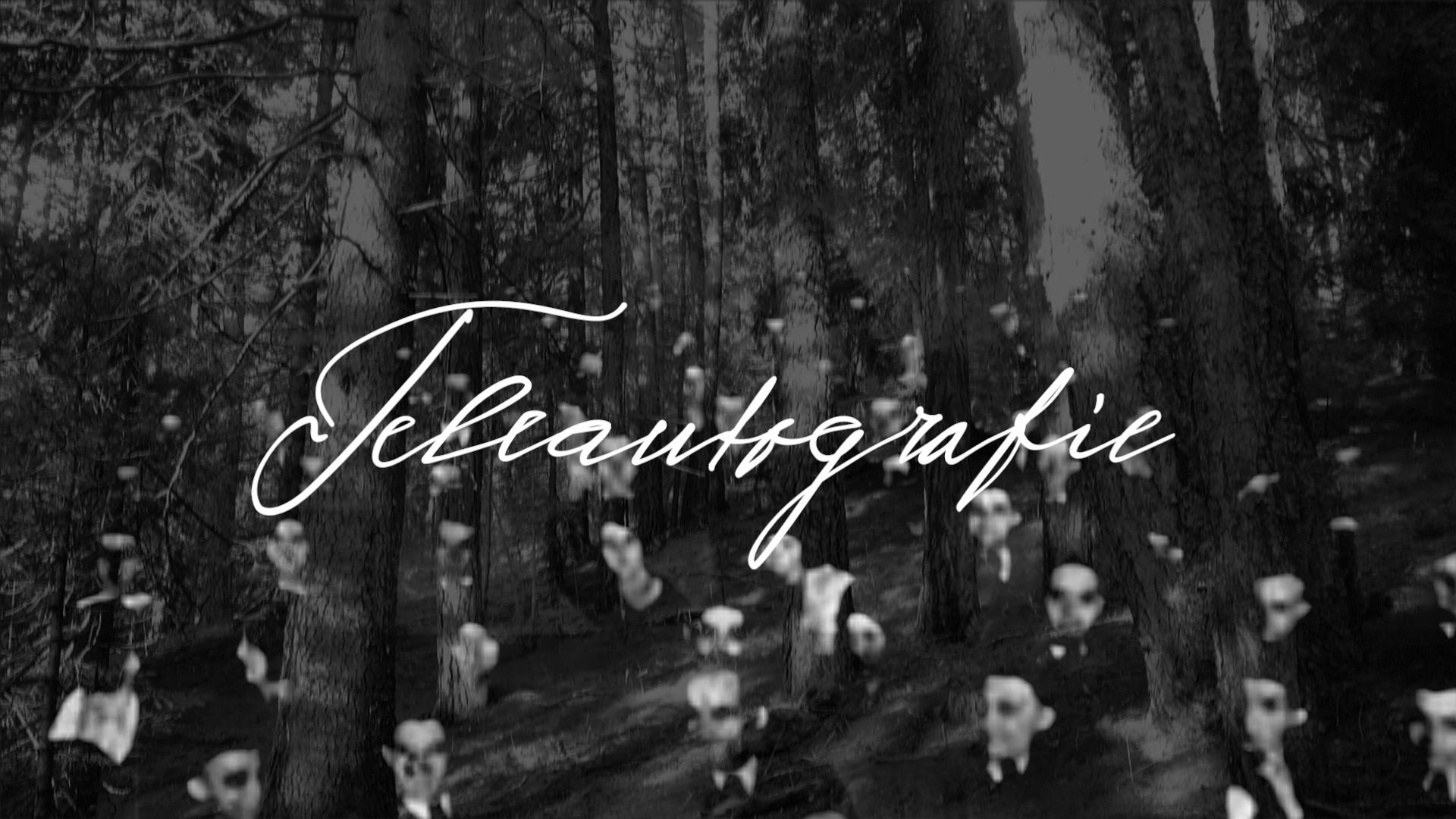 Eine Übertragung oder eine Teleautografie – Dadanaut